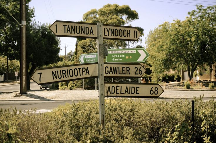 best things to see and do in the barossa valley wine region