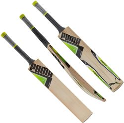 Puma evoPOWER 2Y Cricket Bat JUNIOR