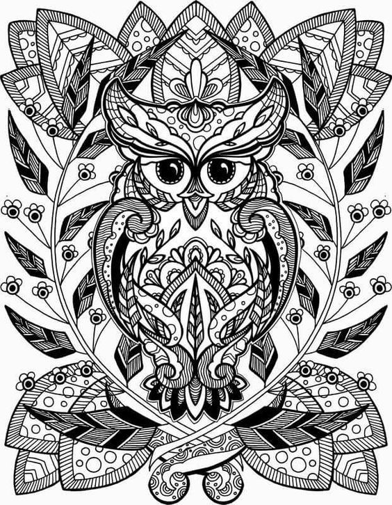 Coloring Sheets Adult Pages Books Cartoon Owls Art Tattoos Therapy Paper Crafting Anxiety