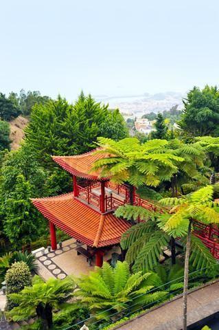 Тропический сад дворца Монте – #Португалия (#PT) Любопытный тропический сад разбит вокруг дворца Монте на Мадейре - здесь за один день вы можете совершить своеобразное путешествие сразу в несколько разных стран мира (Китай, Японию, Индию, Грецию...). http://ru.esosedi.org/PT/places/1000089714/tropicheskiy_sad_dvortsa_monte/