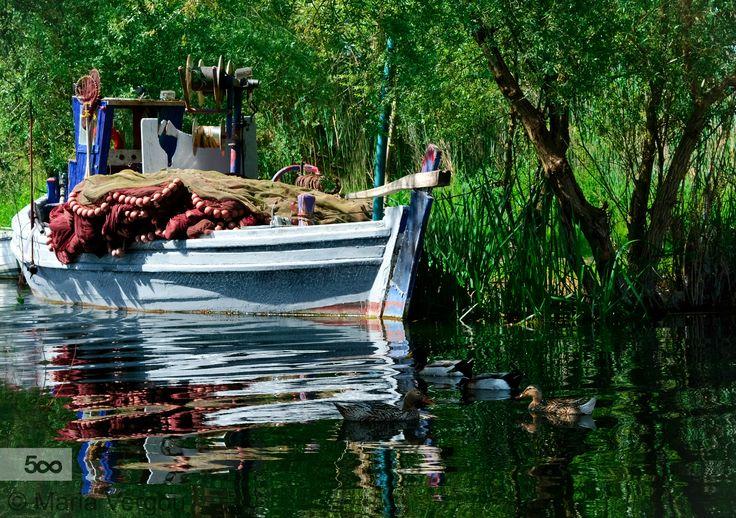 Lake Trichonida, Greece by Maria Vergou on 500px
