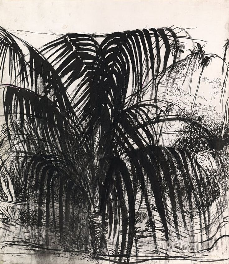 Brett Whiteley's drawings reveal the artist as a master draughtsman