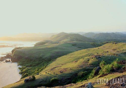 Pemandangan di atas Bukit Merese