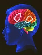 Bilingual Brains – Smarter & Faster | Psychology Today