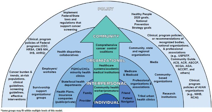Illustration of the Colorectal Cancer Control Program's Social Ecological Model