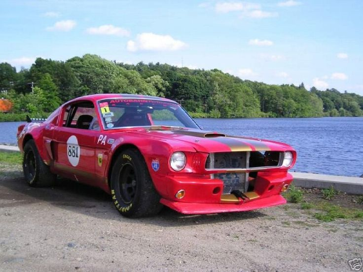 Ford Shelby Truck >> Ford Mustang Race cars - Google Search | Mustangs | Mustang, 65 mustang fastback, Ford motorsport