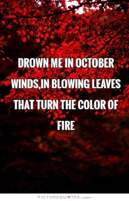 Autumn Rain, Autumn Harvest, Autumn Leaves, October Born, Hello October,  Fall Pics, Fall Pictures, Quote Pictures, Picture Quotes