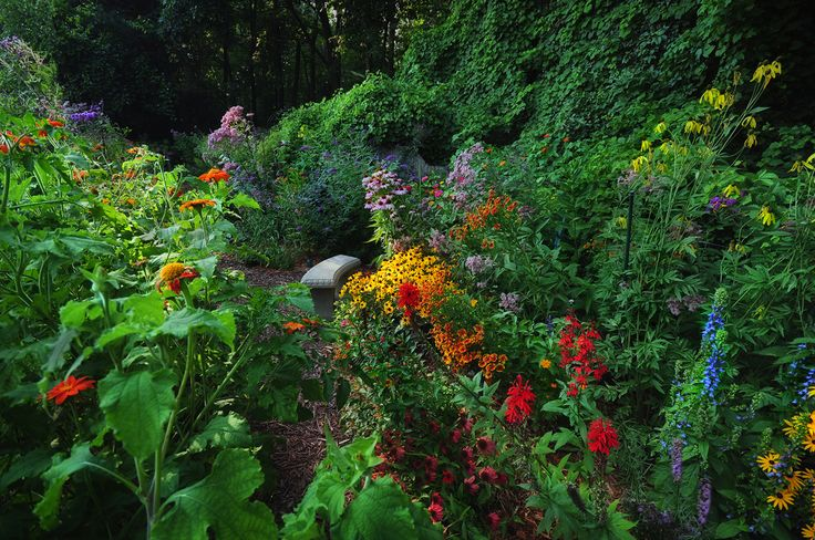 John 39 S Butterfly Garden In Michigan Fine Gardening Garden Pinterest Gardens And Plants