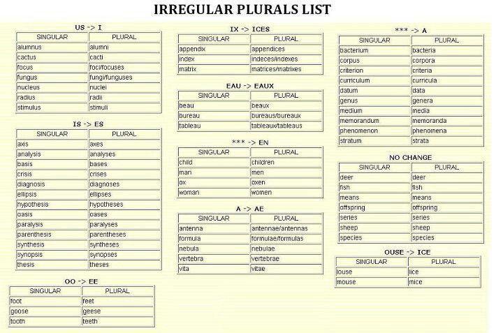 Irregular Plural List