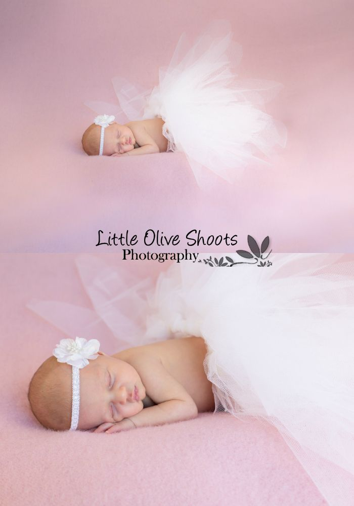 Tutu newborn photography little olive shoots photography wellington new zealand