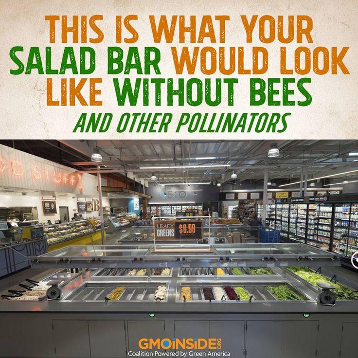 Monsanto Whole Foods Huffington Post