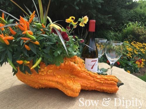 Fall crafts with gourds- Perfect centerpiece for the holiday dinner