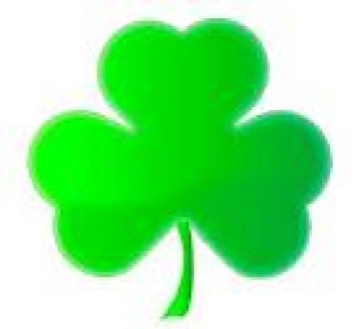 31 Best St Patricks Day March 17th Images On Pinterest San