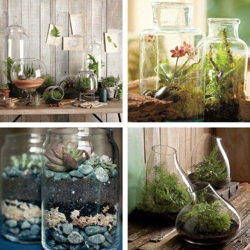 contemporary terrarium ideas