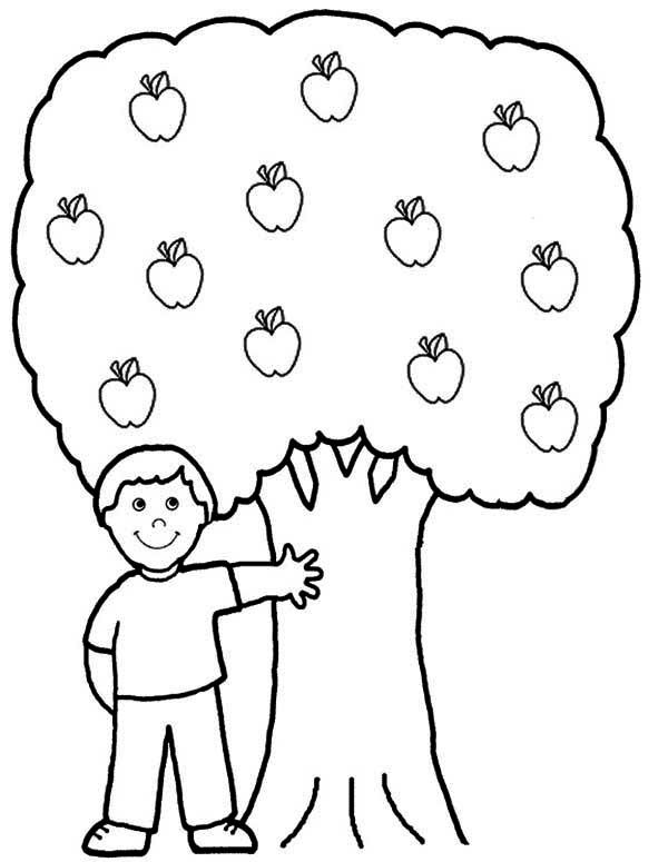 Apple Tree Boy Sitting Under An Apple Tree Coloring Page
