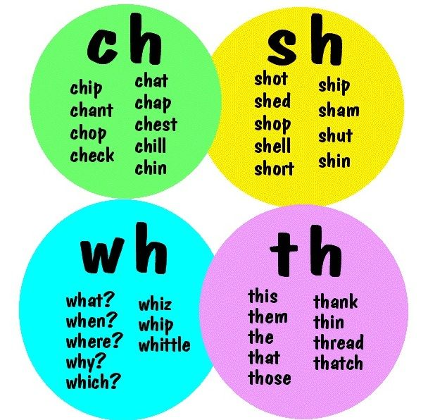 english spelling check free  software