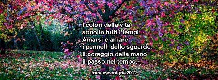 I colori della vita..