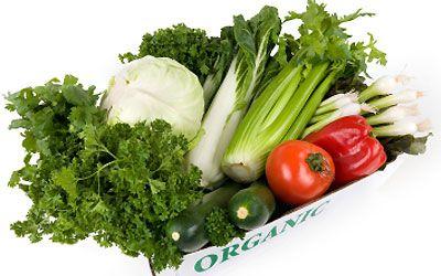 The Chef's Garden @ Epicurean - biodynamic veg