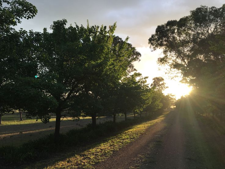 Sunset on the driveway at Tipperary homestead