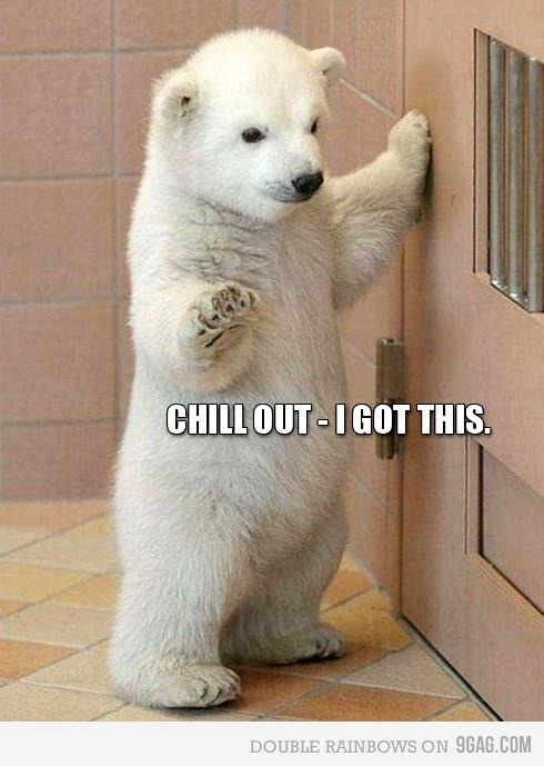 I'm here if you need me bro.Funny School, Funny Pictures, Funny Cat, Funny Photos, Baby Polar Bears, Funny Animal, Baby Bears, Polar Bears Cubs, Animal Memes
