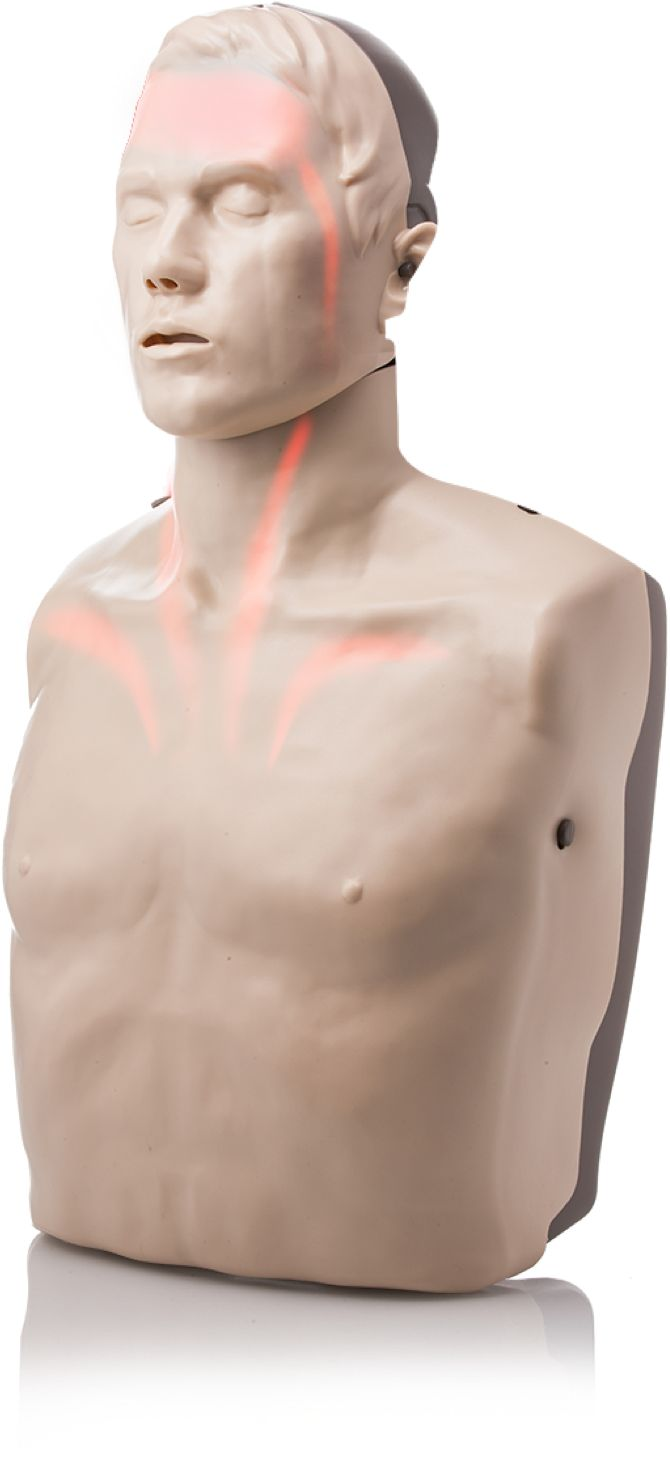 Light-up blood circulation LED CPR Manikin - the Brayden CPR Manikin is exclusively imported into Australia by Aero Healthcare - visit www.braydenmanikins.com.au