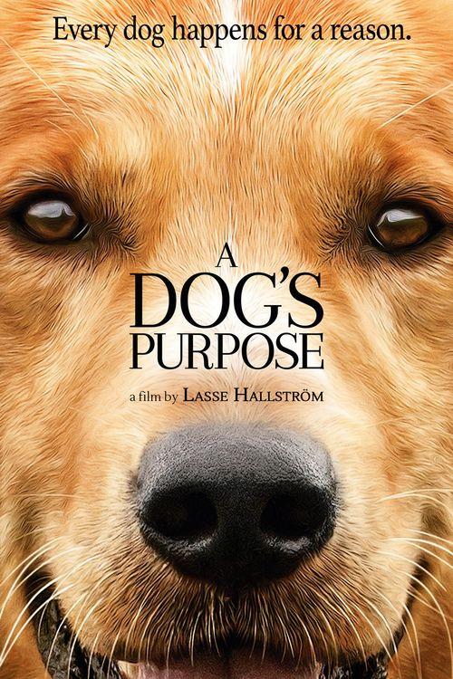 Watch A Dog's Purpose Full Movie Online
