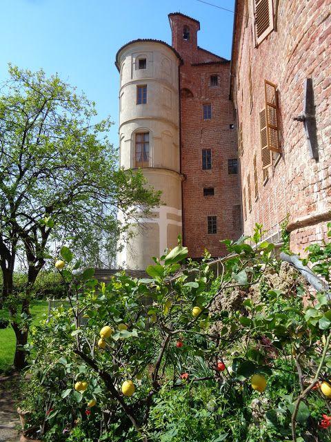 Il Castello di Pralormo https://lefotodiluisella.blogspot.it/2017/04/tulipani-pralormo-messer-tulipano.html