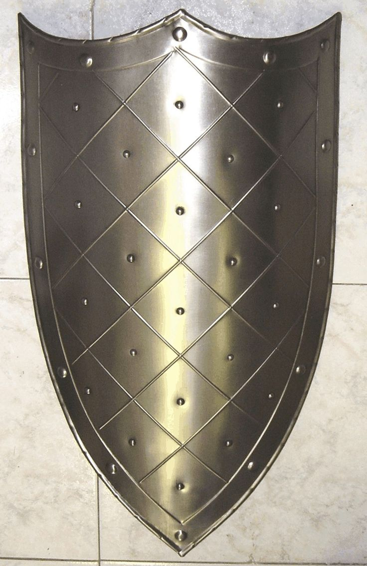 A shiny shield that will blind foes, and with a sharp edge can be used to jab them or bash their heads in. Description from pinterest.com. I searched for this on bing.com/images