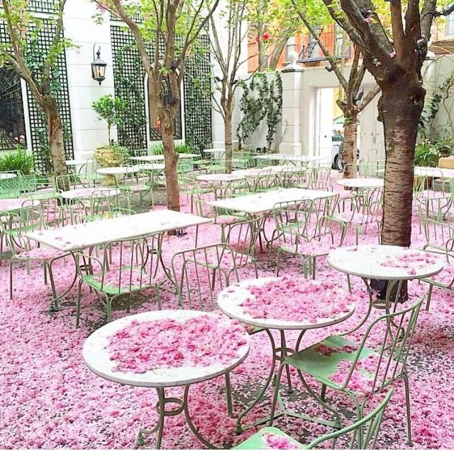 Laduree. Soho ... Ohh to be there right now :)