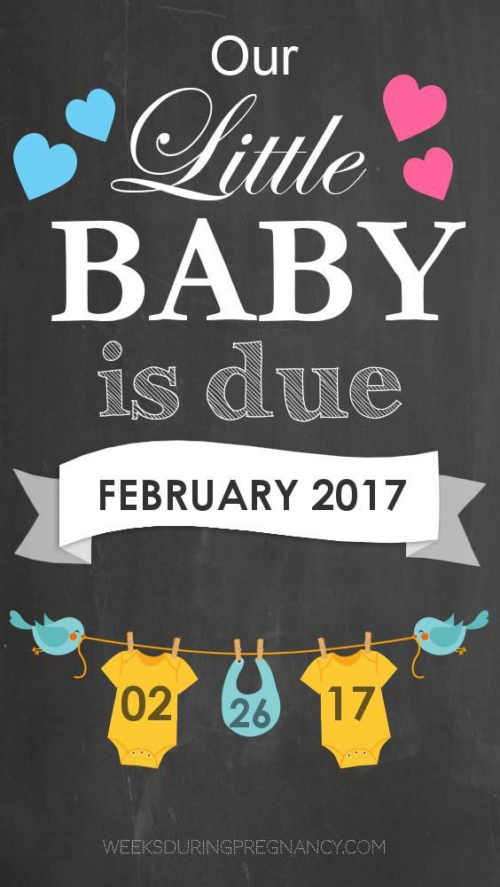Get week by week and specific information for my estimated due date, 2/26/2017!