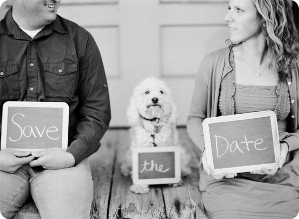 "Or just get a few chalkboards and give your pet ""the."" 