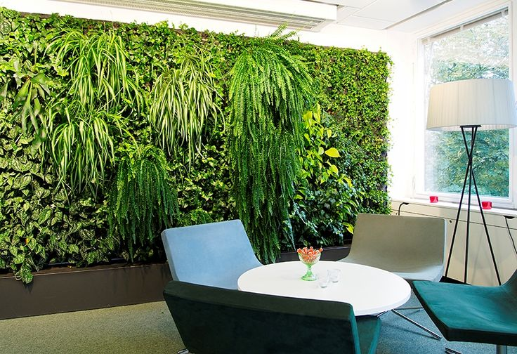 Greenworks' designs every kind of customized living walls for your space!