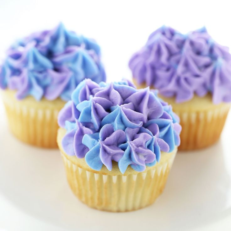 How to Make Hydrangea Cupcakes that are completely elegant and beautiful. no one needs to know just how easy it is to decorate these! ~ Handle the Heat  sc 1 st  Pinterest & 468 best Food~Cupcakes images on Pinterest   Conch fritters Dessert ...