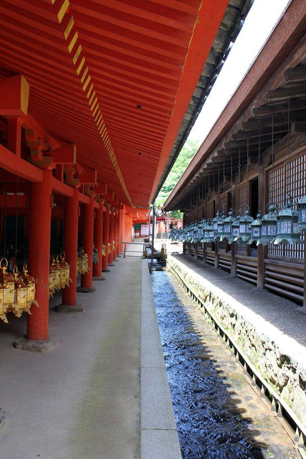 Le Kasuga-taisha (春日大社) est un sanctuaire shintoïste, situé dans le Parc de Nara. Il est connu pour ses multiples lanternes : lanternes en pierre, situées tout au long des allées conduisant au sanctuaire ... http://blog.m0shi-m0shi.com/voyages/sanctuaire-kasuga-taisha/