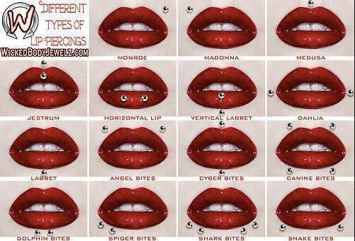 Lip piercing chart :)