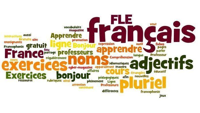 La formation du pluriel des noms et des adjectifs - Avancé - Grammaire Française
