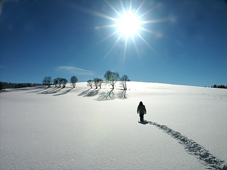 Walking in the Snow: Winter Snow, Snow Photography, Crunches, Snow Scene, Winter Wonderland, Planets Earth, Cold Weather, Walks In