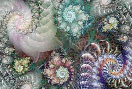 ShellsFibonacci Shells, Mandelbrot Sets, Sea Shells, Mandelbrot Fractals, Fractals Colors, Artists Work, Fractal Art, Fractals Art, Sacred Geometry