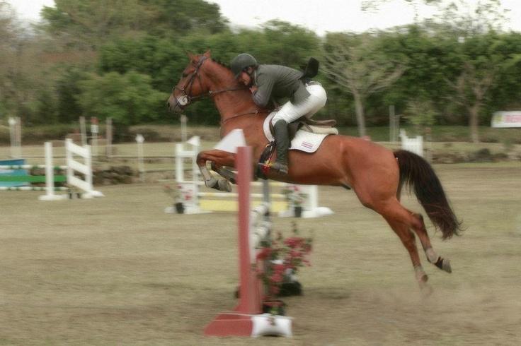 Horses, Equitación Costa Rica