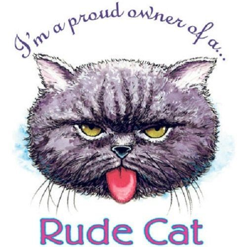17 Best Ideas About Funny Rude On Pinterest Cross Stitch