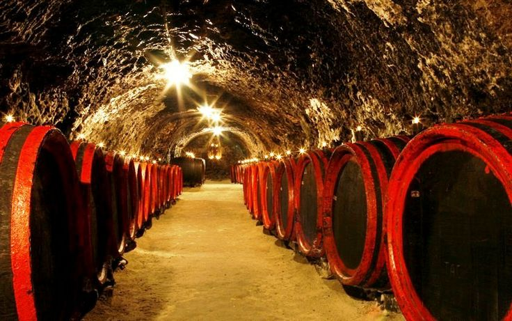 TOKAJ WINE REGION Wine lovers will have a great time in Tokaj wine region near Košice city famous for its naturally sweet wine which was favoured for centuries on the tables of many European kings.