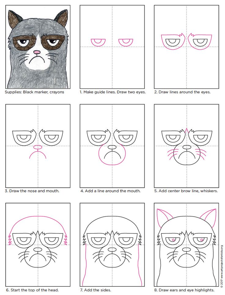 1000+ Ideas About Easy Cat Drawing On Pinterest