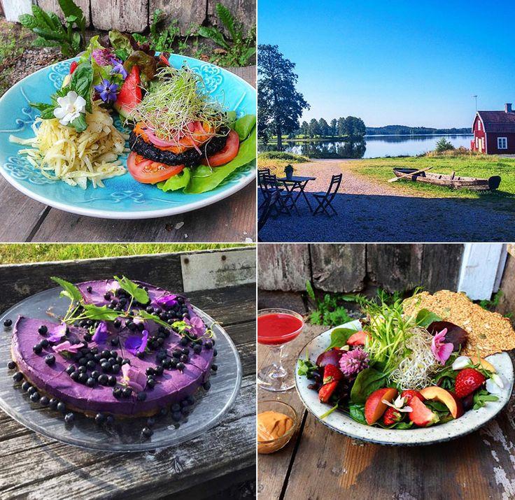 Open New Doors – Raw food & vegetarisk mat och fika i lantlig miljö | Smålands smultron
