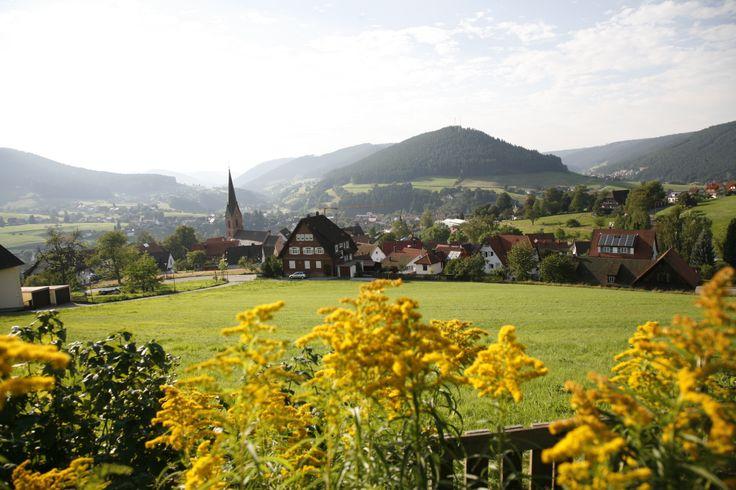 Blick auf Baiersbronn.