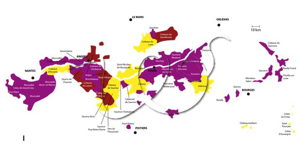 Vignoble de la Vallée de la Loire