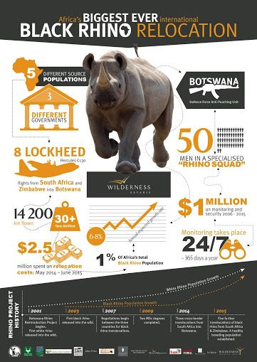 Africa's biggest ever international black rhino relocation - by the numbers...