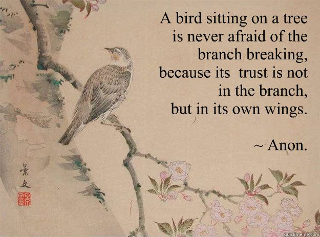 A bird sitting on a tree  is never afraid of the  branch breaking,  because its  trust is not  in the branch,  but in its own wings.   ~ Anon. - A bird sitting on a tree  is never afraid of the  branch breaking,  because its  trust is not  in the branch,  but in its own wings.   ~ Anon.  Strength