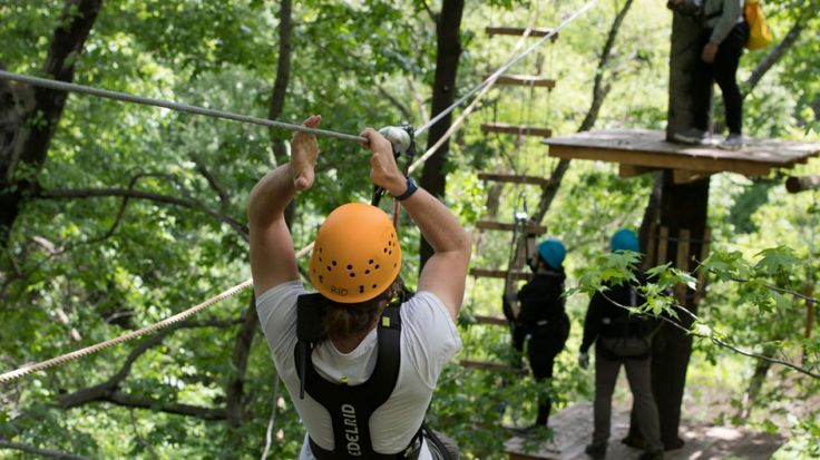 Bronx Zoo's Treetop Adventure opens to the public on June 16.
