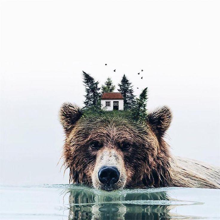 Casa no urso. Foto manipulação de Luisa Azevedo
