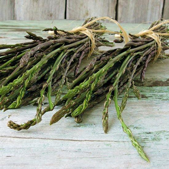 Gli asparagi o turioni, ossia i germogli giovani della pianta perenne, sono ottimi lessati o in frittata. Sono diuretici e buoni ricostituenti, ma vanno consumati con moderazione.